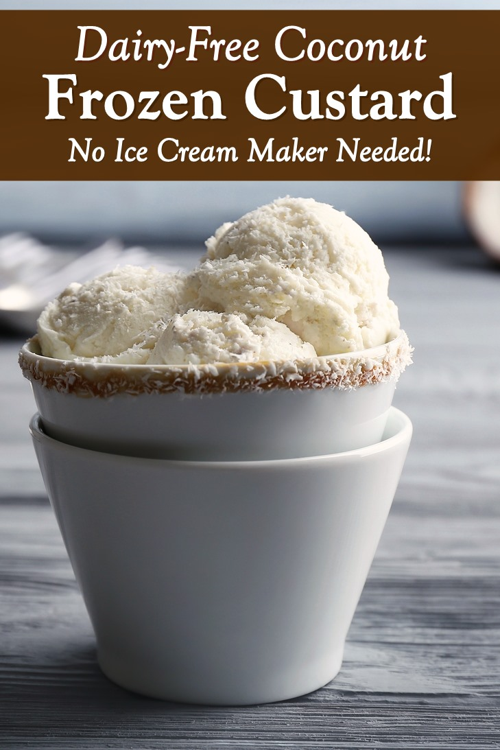 Dairy-Free Coconut Frozen Custard Recipe without an Ice Cream Maker!