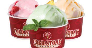 Cold Stone Creamery Dairy-Free Sorbet