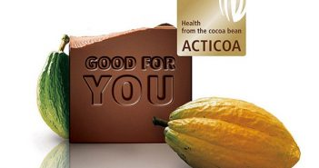 Healthy Cocoa, Chocolate & Antioxidants