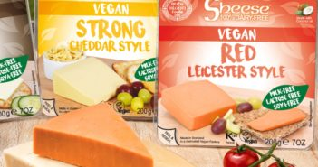 "Sheese Vegan Cheese Blocks, Wedges, and Grated Shreds - dairy-free ""hard cheese"" alternatives in over a dozen flavors."