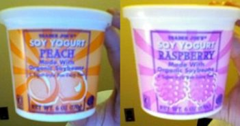Trader Joe's Soy Yogurt Review and Info