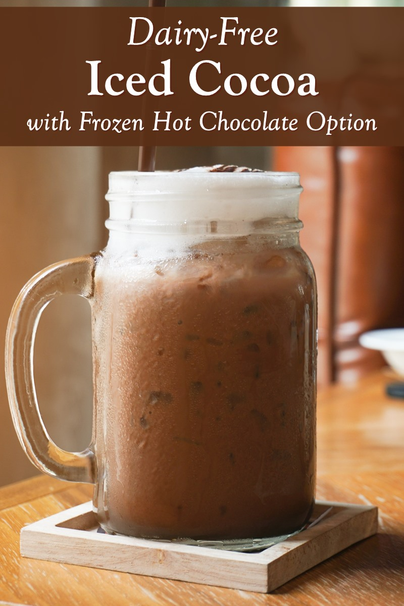 Dairy-Free Iced Cocoa Recipe with Vegan Frozen Hot Chocolate Option