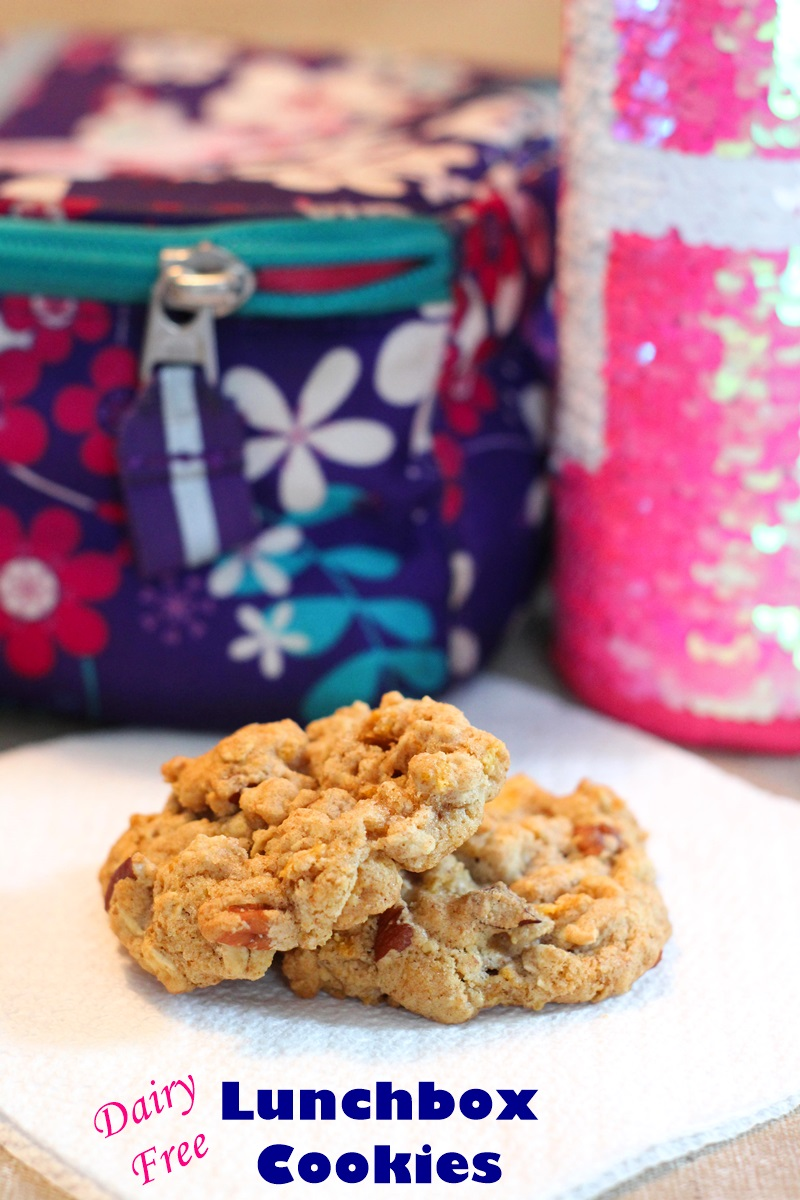 Lunchbox Cookies Recipe - a kid favorite, dairy-free and optionally nut-free!