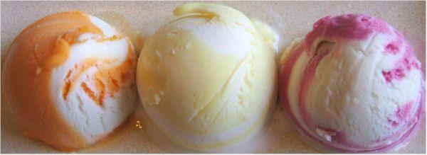 Turtle Creamy Frozen Dessert