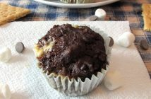 S'mores Muffins Recipe (Dairy-Free, Nut-Free) - Part Nutritious, Part Indulgence