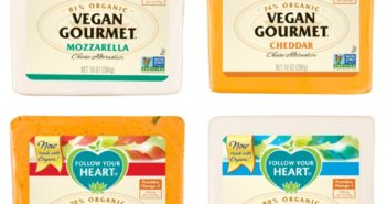 Vegan Gourmet Cheese Alternative by Follow Your Heart (Review) - this soy-based dairy-free substitute is their classic product. Non-GMO Verified & over 70% organic