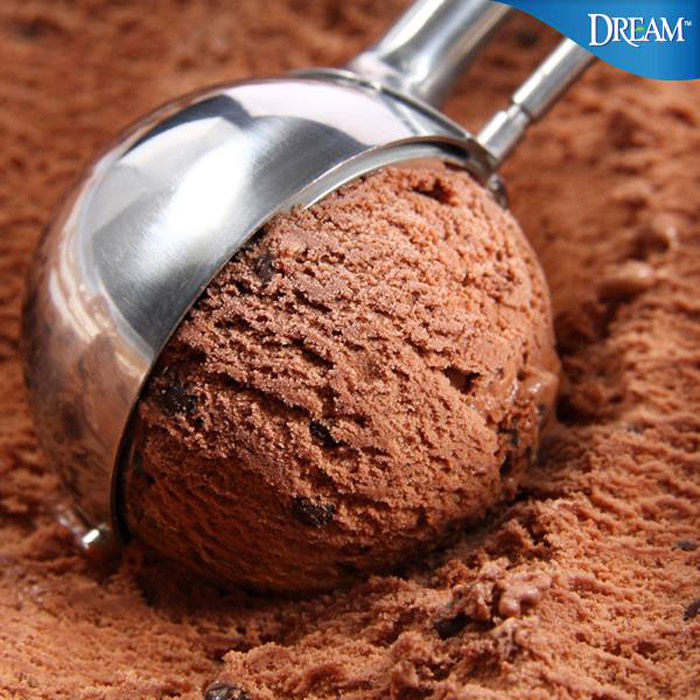 Soy Dream - a dairy-free vegan alternative to ice cream available in 4 different flavors!