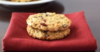 Cranberry Chocolate Chip Oatmeal Cookies Recipe - dairy-free, gluten-free, vegan, allergy-friendly and yummy!