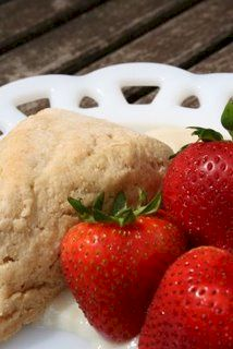 Dairy-Free and Vegan Vanilla Shortcake using Nasoya Silken Creations