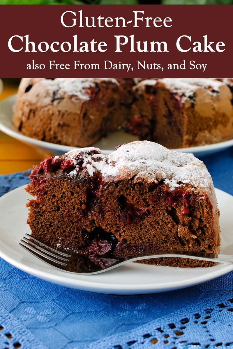Gluten-Free Chocolate Plum Cake Recipe that's also Free From Dairy, Nuts, and Soy