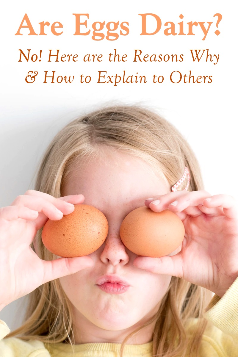 Are Eggs Dairy? No! Here are the Definitive Reasons Why, and How to Explain it to Other People