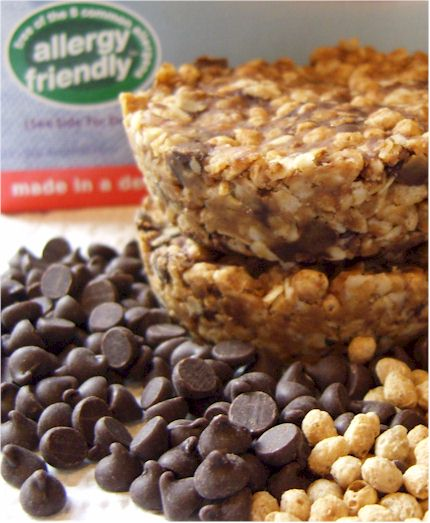 Chocolate Chip Flax and Oat Bars  - Allergy-friendly no bake snack