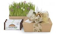 Go Macro Eco-Friendly Gift