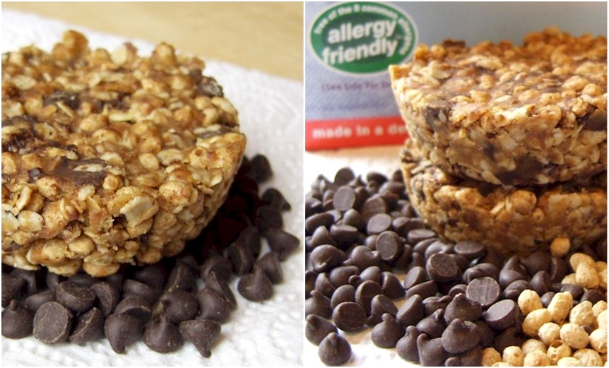 Chocolate Chip Flax and Oat Bars Recipe - gluten-free, dairy-free, optionally nut-free, soy-free, and optionally vegan. Fast, easy, DELICIOUS!