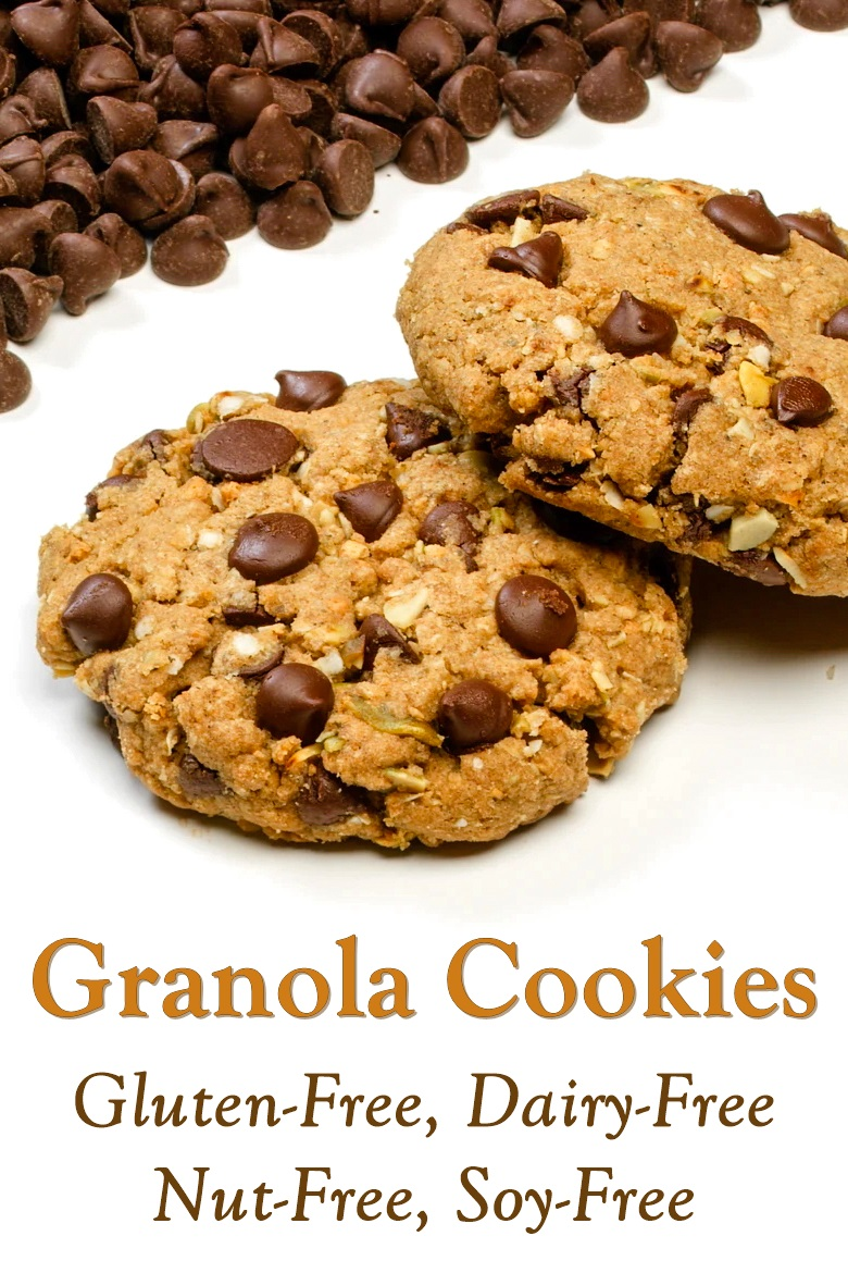 Gluten-Free Granola Cookies Recipe - also dairy-free, egg-free, nut-free, soy-free, plant-based, and vegan!