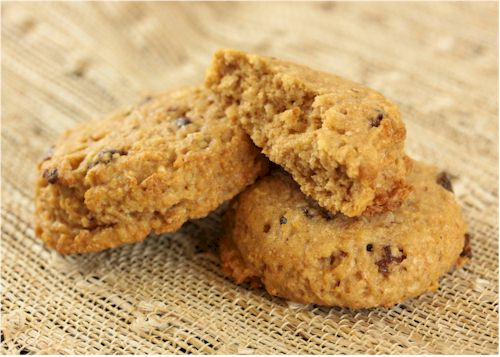 Faux Oatmeal Cookies