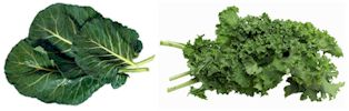 Leafy Greens - Collards and Kale