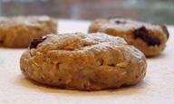 Vegan, Gluten-Free, Soy-Free Raw Oatmeal Raisin Protein Bites