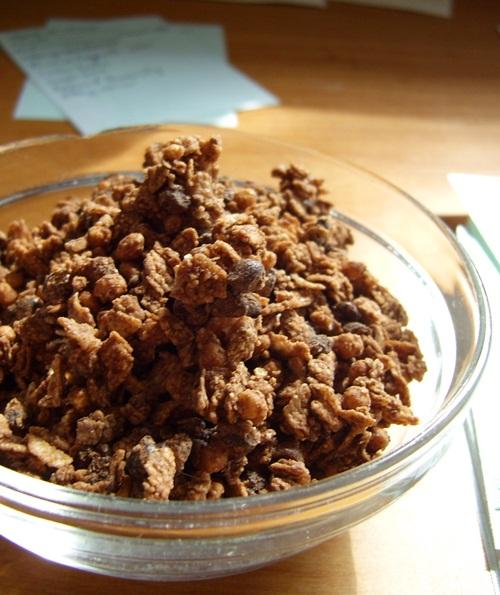 Enjoy Life Chocolate Crunch Granola - Allergen-Free