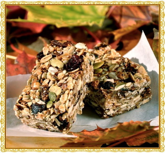 Granola Cookie Bars - Dairy-Free and Gluten-Free
