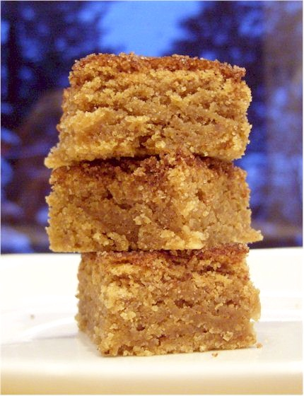 Dairy-Free Snickerdoodle Blondies - Christmas Party