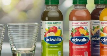 Odwalla Dairy Free Smoothies and Protein Drinks (Review)