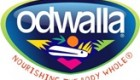 Review: Odwalla Dairy-Free Smoothie Refreshers