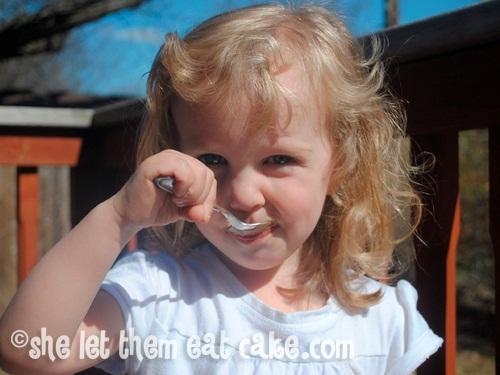 Raw Chocolate Frosties or Fudgesicles - Dairy-Free, Vegan, Soy-Free, Sugar-Free