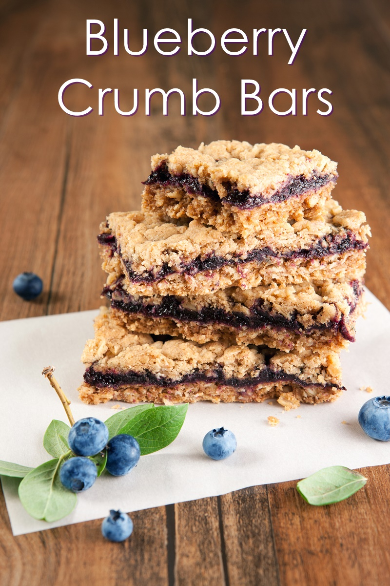 Bountiful Blueberry Crumb Bars Recipe (dairy-free, allergy-friendly, vegan and full of options)