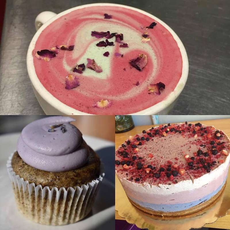 Dulce Vegan Bakery & Cafe in Atlanta, GA