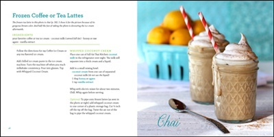 Dairy-Free Ice Cream Cookbook from The Spunky Coconut