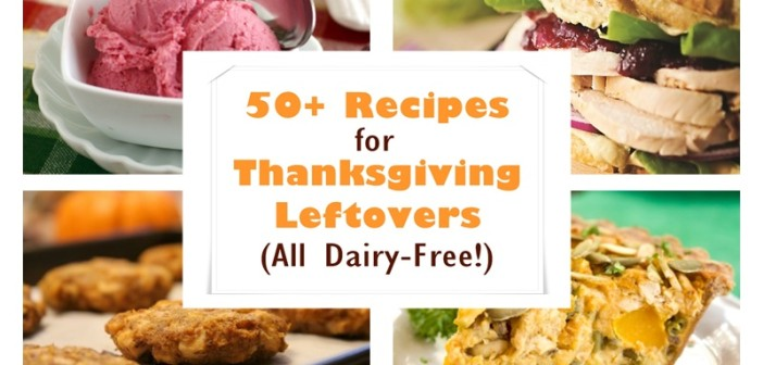 Over 50 Dairy-Free Recipes for Thanksgiving Leftovers