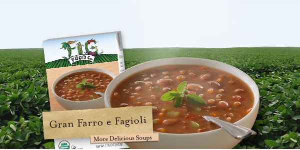 Fig Food Vegan Soups