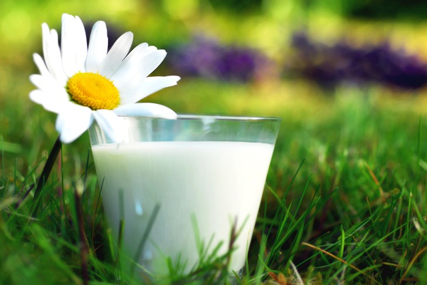 Dairy-Free Benefits: Vegan Living and the Environment