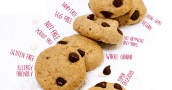 HomeFree Cookies - Allergy-Friendly Crunchy Cookies (whole grain, vegan, gluten-free and nut-free)
