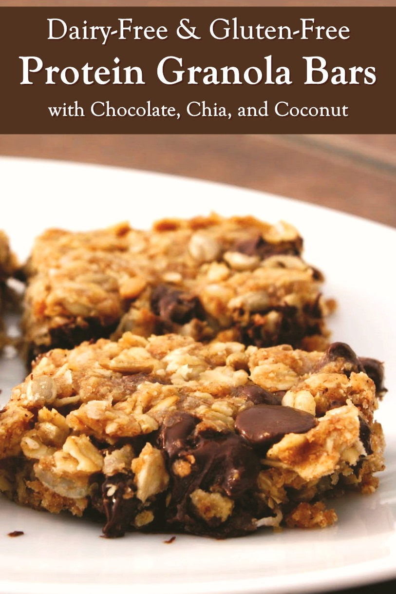 Chocolate Chip Protein Granola Bars Recipe made Dairy-Free & Gluten-Free - soy-free and nut-free options