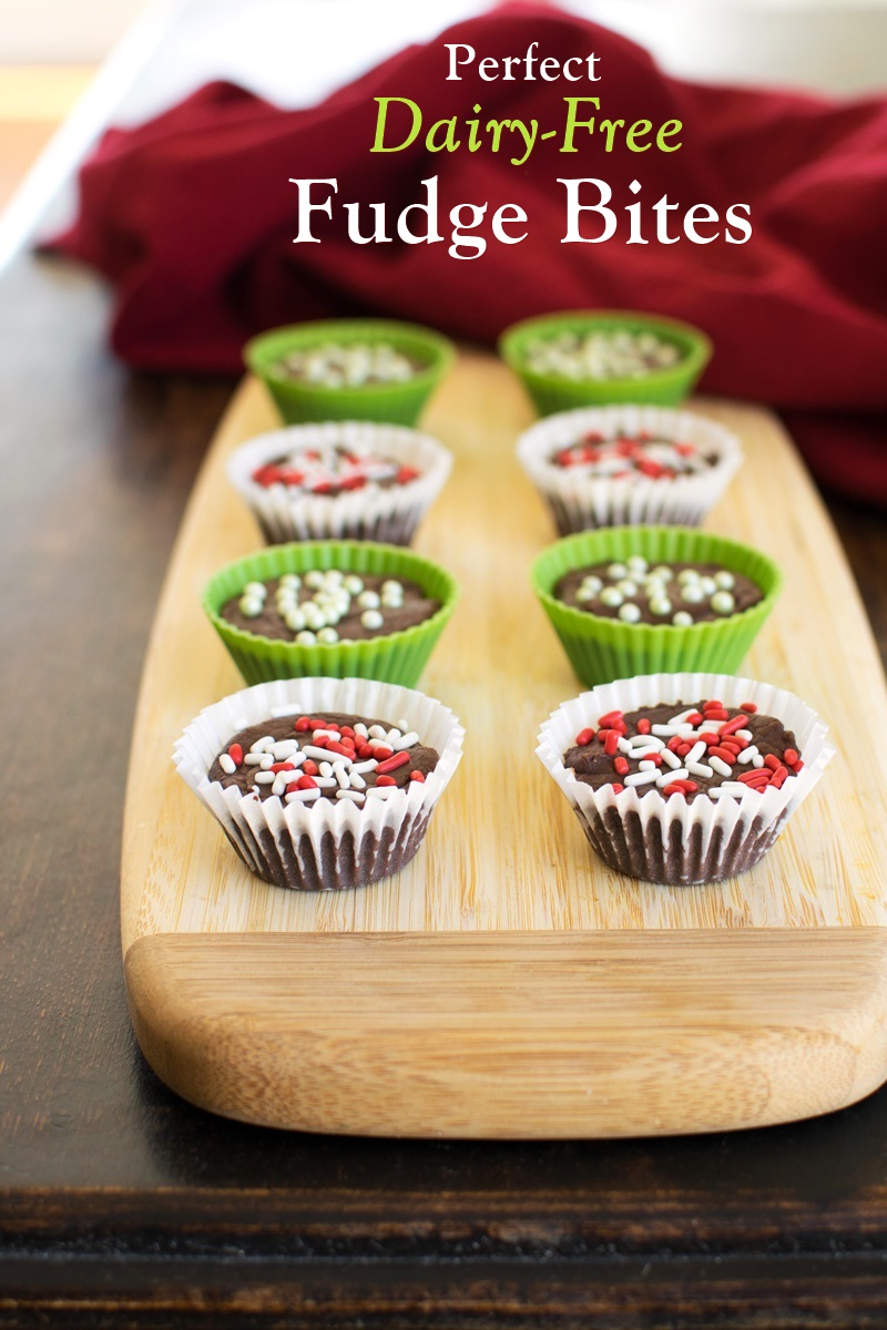 Dairy-Free Fudge Bites Recipe with My Perfectly Peppermint Option! Vegan, Gluten-Free, Nut-Free, Soy-Free, Easy, and Everyone Loves Them!