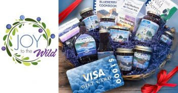 Joy to the Wild Blueberries Contest - Grand Prize