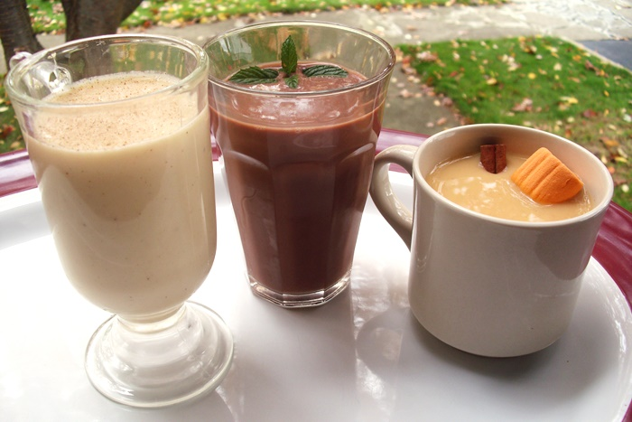 So Delicious Dairy Free Holiday Beverages - Nog, Chocolate Mint and Pumpkin Spice