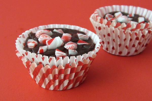 Vegan and Dairy-Free Peppermint Fudge Bites 3