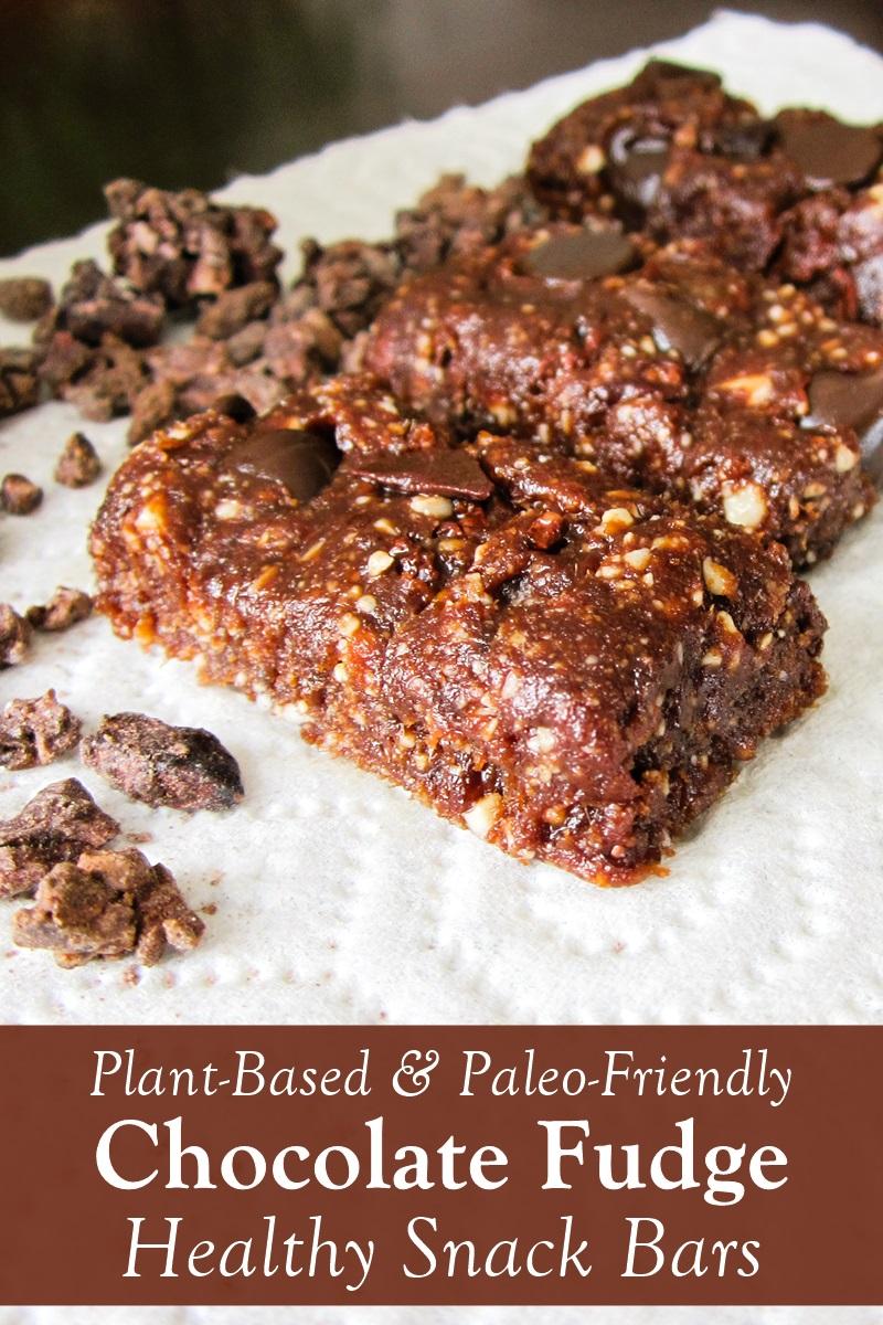 Healthy Chocolate Fudge Bars Recipe - dairy-free, plant-based, paleo, raw, and gluten-free. Like Homemade Larabars.