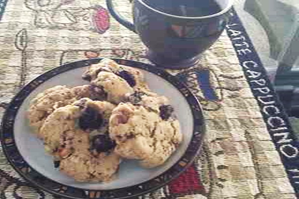 Michigan Mountain Biking Cookies Recipe