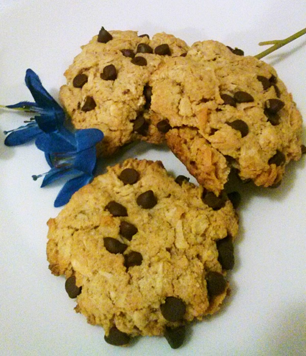 Vegan Coconut Oatmeal Chocolate Chip Cookies