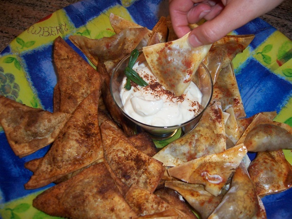 Southwestern Wonton Samosas with Chili-Spiced Yogurt Dip
