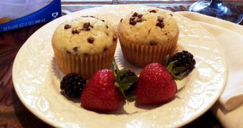 Mostly Healthy Chocolate Chip Muffins