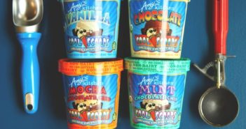 Amy's Ice Cream - Organic Non-Dairy Frozen Dessert made with Coconut Milk (Vegan, Dairy-Free)