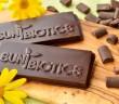 Sunbiotics Probiotic Chocolate Bars with Prebiotics (Yacon) - low-sugar, dairy-free