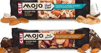 Clif Mojo Trail Mix Bars: Sweet, Salty, Fruity, Nutty, Chocolaty (dairy-free, gluten-free)