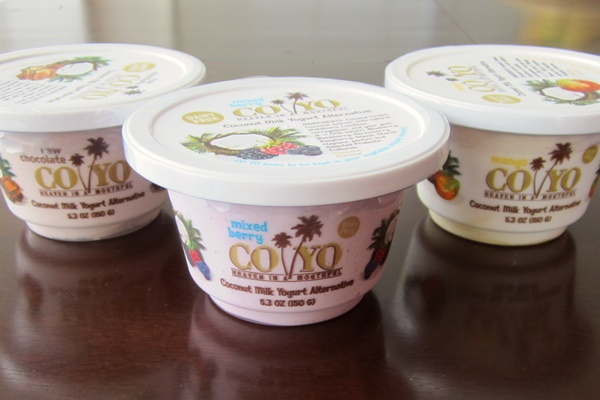 CoYo Coconut Milk Yogurt Alternative - dairy-free, soy-free, vegan, and low in sugar!