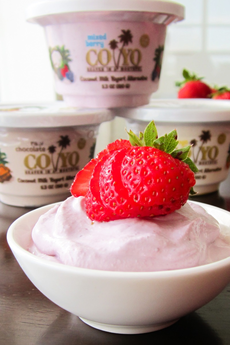 CoYo Coconut Milk Yogurt Alternative Review - dairy-free, vegan, paleo, and intensely rich and creamy. We have the ingredients, tasting notes and more ...